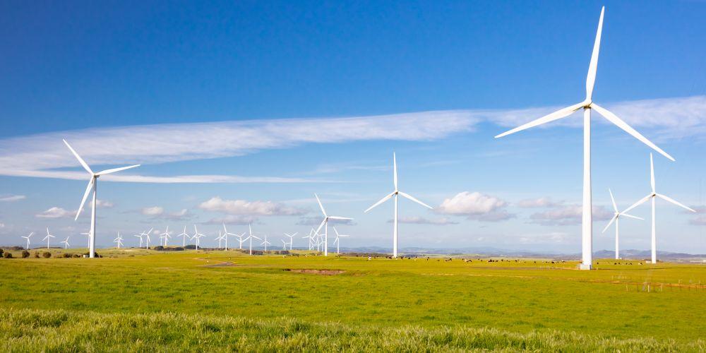 SA's Renewable Energy plan, a great discipline to Study!