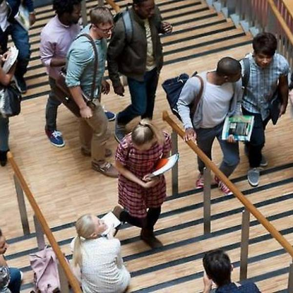Universities waiving English requirements to attract international students: report