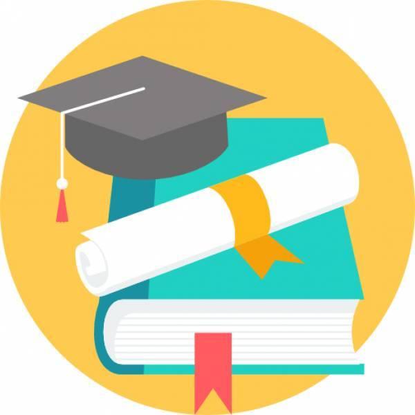 Phoenix Academy Programs