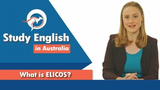 Study English  In  Australia ELICOS